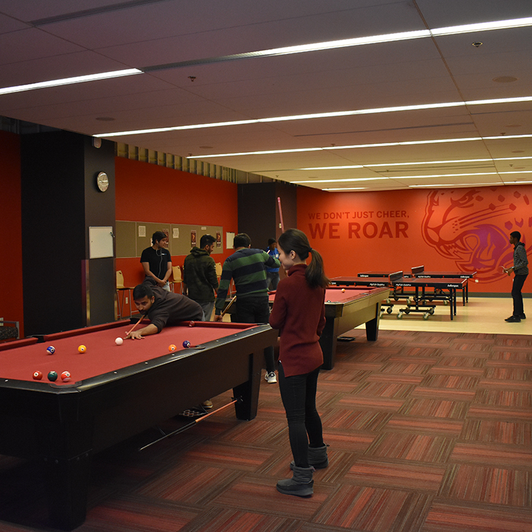 A game of billiards in the game room.